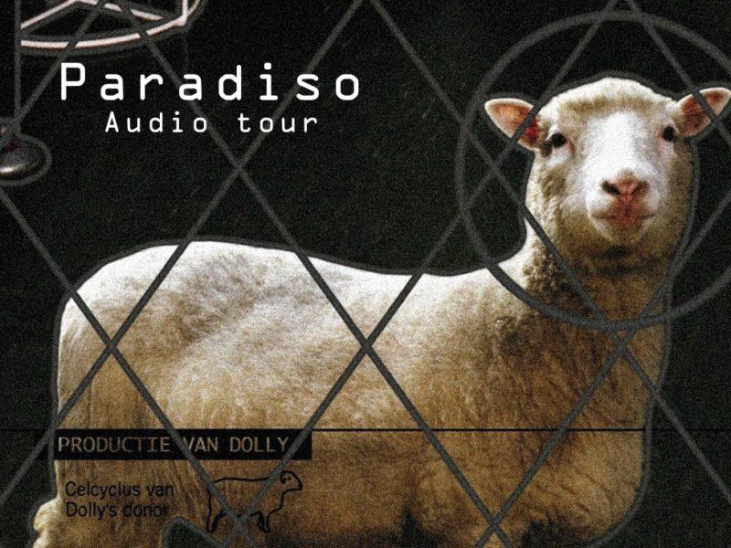 Paradiso Audiowalk